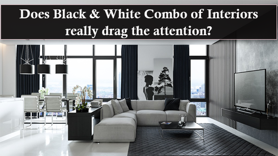 Black and white combo for interiors